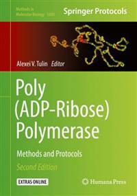 Poly (ADP-Ribose) Polymerase