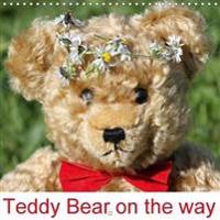 Teddy Bear on the Way 2018