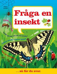 Fråga en insekt