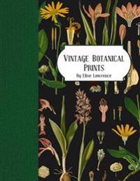 Vintage Botanical Prints