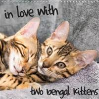 In Love with 2 Bengal Kittens 2018
