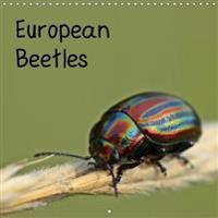European Beetles 2018