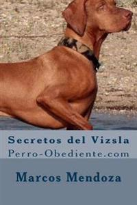 Secretos del Vizsla: Perro-Obediente.com