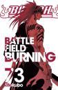 Bleach. Battlefield burning