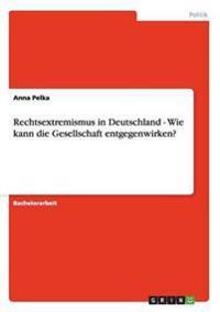 Rechtsextremismus in Deutschland - Wie Kann Die Gesellschaft Entgegenwirken?