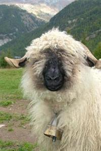 A Valais Black Nose Sheep Wearing a Bell Journal: 150 Page Lined Notebook/Diary