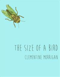 The Size of a Bird