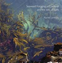 Seaweed foraging in cornwall and the isles of scilly