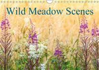 Wild Meadow Scenes 2018