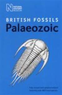 British Palaeozoic Fossils