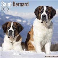 Saint Bernard Calendar 2018