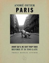 Paris, Before It Is Too Late