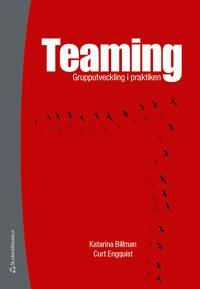 Teaming : grupputveckling i praktiken