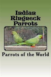 Indian Ringneck Parrots
