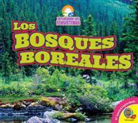 Los Bosques Boreales (Boreal Forests)