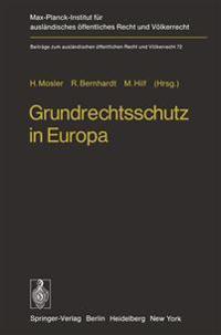 Grundrechtsschutz in Europa