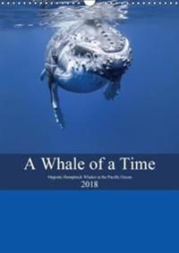 A Whale of A Time 2018