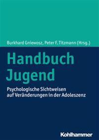 Handbuch Jugend: Psychologische Sichtweisen Auf Veranderungen in Der Adoleszenz