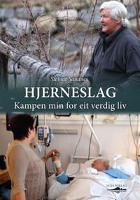 Hjerneslag - Steinar Sandnes pdf epub