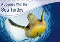 A Journey with the Sea Turtles 2018