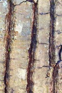 Oak Tree Bark Journal: (Notebook, Diary, Blank Book)