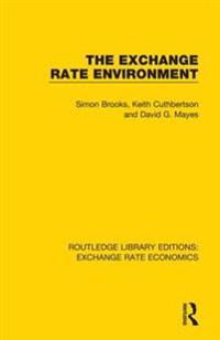 Exchange Rate Environment