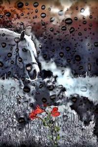 Horse Mural: Notebook