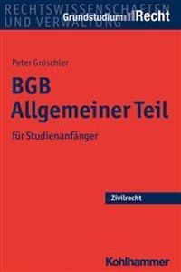 Bgb Allgemeiner Teil: Fur Studienanfanger