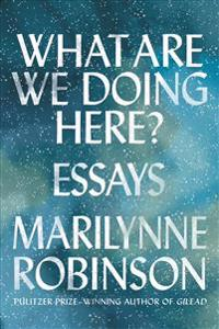 What Are We Doing Here?: Essays