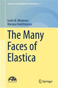 The Many Faces of Elastica
