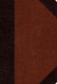 ESV Large Print Compact Bible (Trutone, Brown/Cordovan, Portfolio Design)