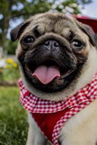 Pretty Tan Pug Dog with a Red Gingham Ruffled Vest Journal: 150 Page Lined Notebook/Diary