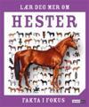 Lær deg mer om hester