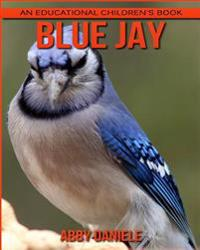 Blue Jay! an Educational Children's Book about Blue Jay with Fun Facts & Photos