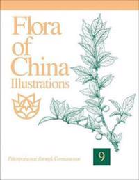 Flora of China Illustrations, Volume 9: Pittosporaceae Through Connaraceae
