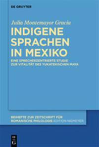 Indigene Sprachen in Mexiko: Eine Sprecherzentrierte Studie Zur Vitalitat Des Yukatekischen Maya