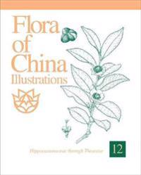 Flora of China Illustrations