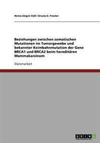 Beziehungen Zwischen Somatischen Mutationen Im Tumorgewebe Und Bekannter Keimbahnmutation Der Gene Brca1 Und Brca2 Beim Hereditaren Mammakarzinom