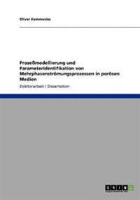 Prozemodellierung Und Parameteridentifikation Von Mehrphasenstromungsprozessen in Porosen Medien