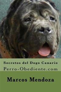 Secretos del Dogo Canario: Perro-Obediente.com