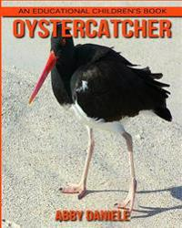 Oystercatcher! an Educational Children's Book about Oystercatcher with Fun Facts & Photos