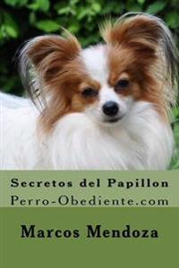 Secretos del Papillon: Perro-Obediente.com