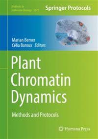 Plant Chromatin Dynamics