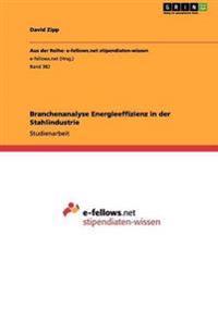 Branchenanalyse Energieeffizienz in Der Stahlindustrie