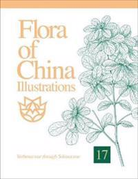 Flora of China Illustrations, Volume 17: Verbenaceae Through Solanaceae