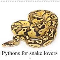 Pythons for Snake Lovers 2018