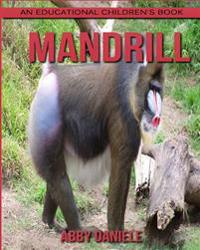 Mandrill! an Educational Children's Book about Mandrill with Fun Facts & Photos