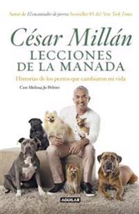 Lecciones de la Manada / Cesar Millan's Lessons from the Pack: Historias de Los Perros Que Cambiaron Mi Vida / Stories of the Dogs Who Changed My Life