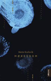 Mørkerom - Mette Karlsvik | Inprintwriters.org