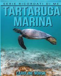 Tartaruga Marina: Libro Sui Tartaruga Marina Per Bambini Con Foto Stupende & Storie Divertenti
